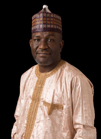 the executive chairman